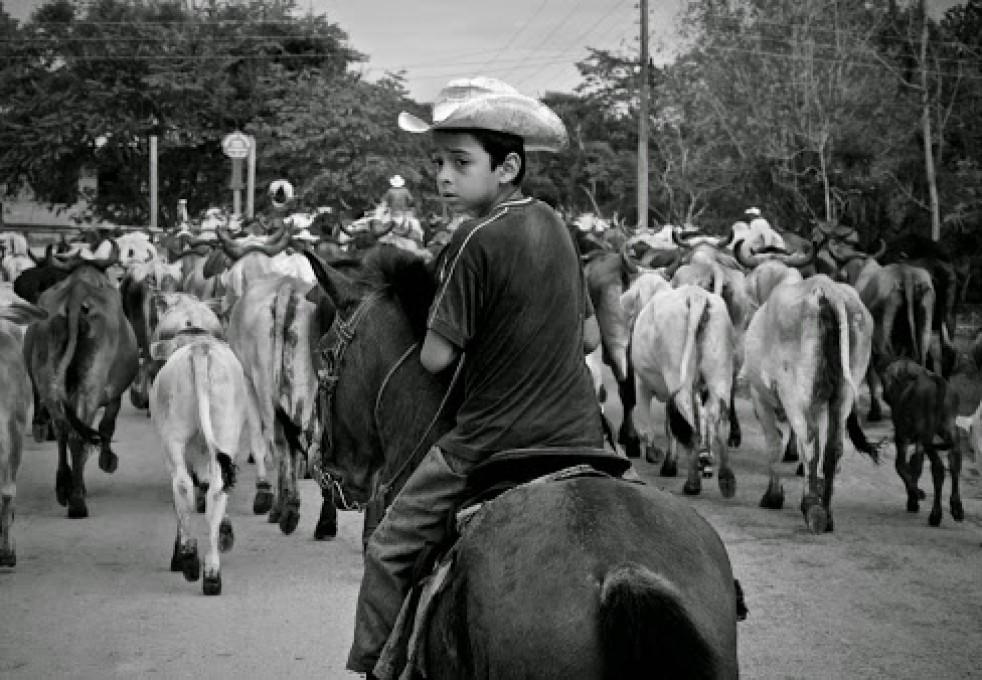 Flores (Guatemala)