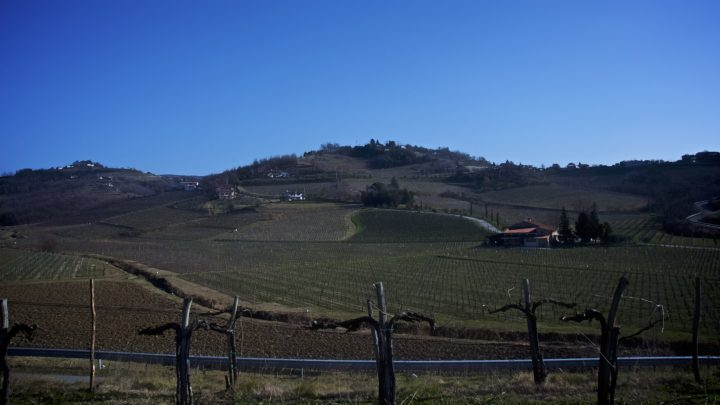 Collio-Brda e Collio